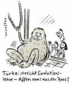 Erdogan Evolution Schulen Säkularismus Türkei Evolutionslehre Zoo