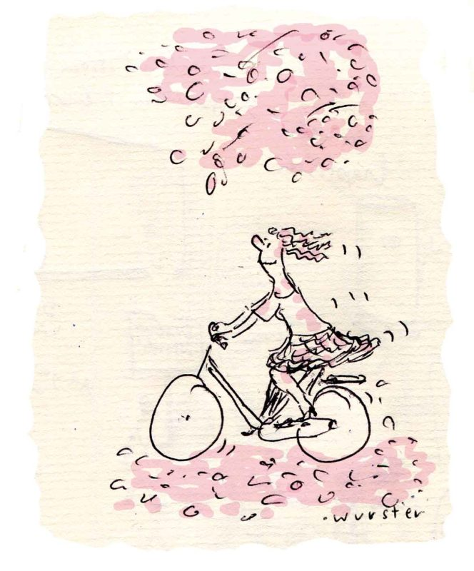 Sommer Fahrrad Licht Schatten Wind